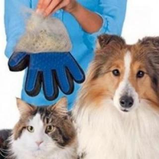 Manusa pentru par de animale, cu zimti, curata si maseaza in acelasi timp